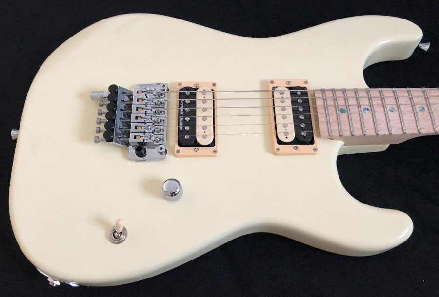 Stormshadow Guitarworks DBX 10th #3