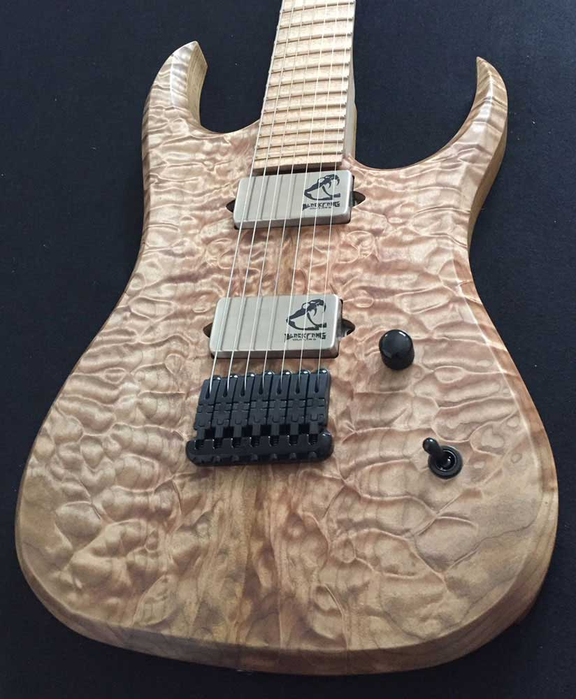 BlackFang Guitars #1